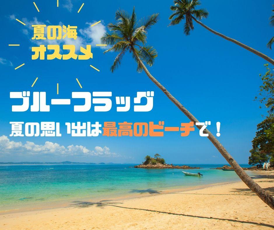 【日本のブルーフラッグ】夏の思い出は最高のビーチがオススメ!
