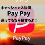 Pay Pay  キャッシュレス決済おすすめ 迷ってるなら損するよ!